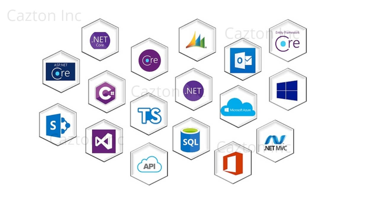 .NET 5 Consulting